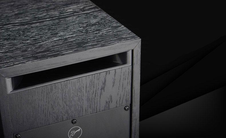Swans_D1010_IV_Detail_5
